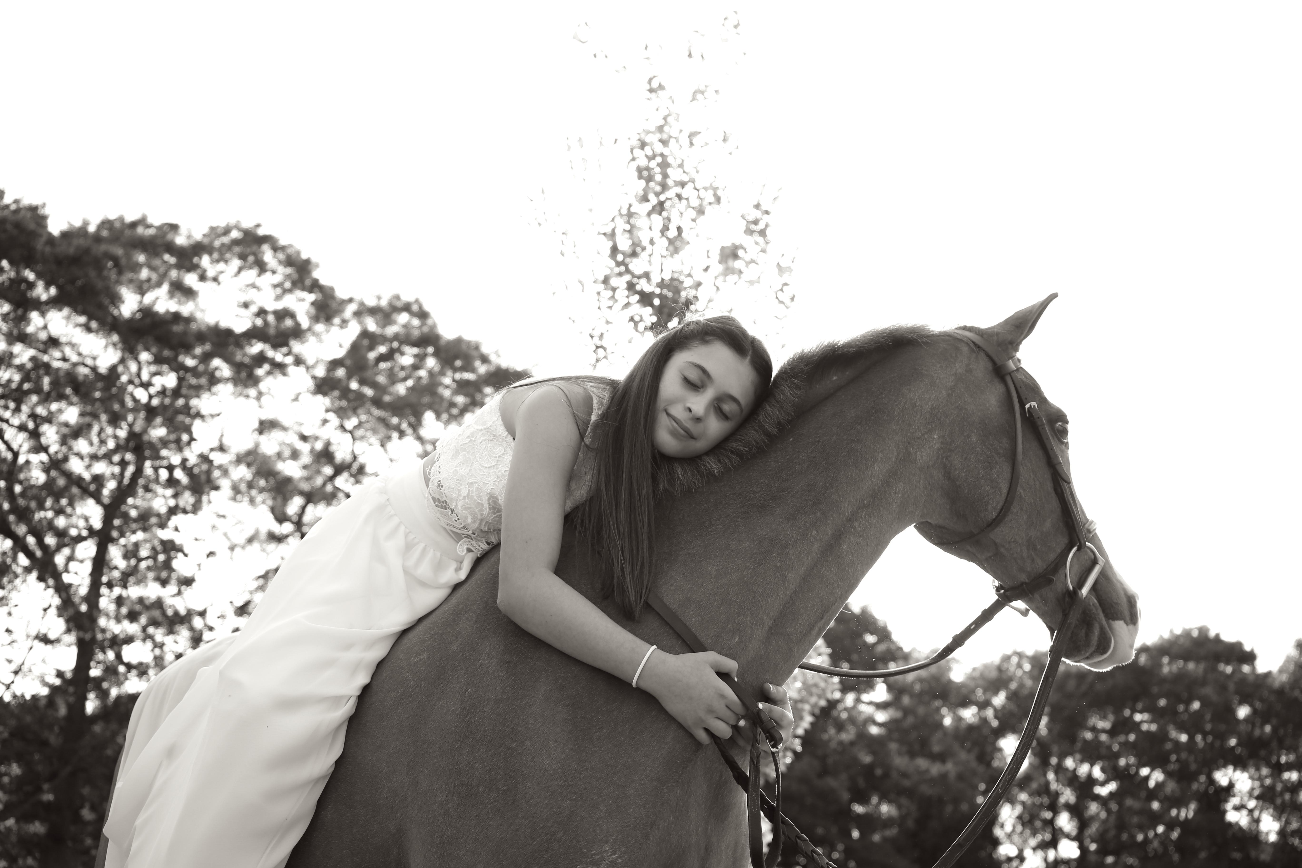 Horse hug
